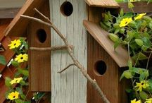 Bird House / Cage / Terrarium