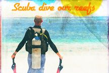 Scuba Posters / Spread the word! Scuba is the best!