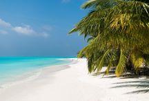 meeru maldives