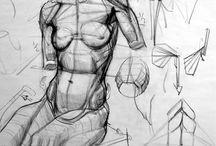 { Anatomy Kevin Chen }