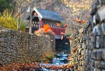 Kentucky, Home Sweet Home! / by Bridgette L Gregory
