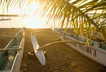 hawaiian summer   / by Joanne Wong
