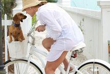 Bicycles retro