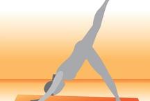 Health and Fitness / by Rachel Hartgen