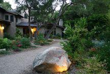 Santa Barbara Natural Landscape / Natural Santa Barbara landscape around home.