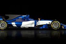 2017 Formula 1 Season