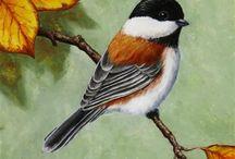 Kuş resimleri