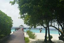 travel / Maldives