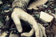 Decay / by Margie Ferraro