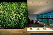 Vertical Garden 垂直花园 / by Nu Zhang
