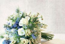 Modré kytice