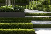 steps stairs
