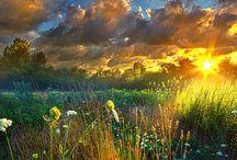 colourful landscapes