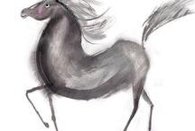 horse illustrations / horse illustrations