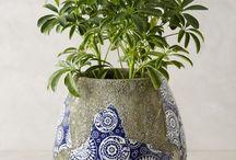 pot plant mosaic