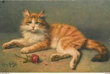 Vintage postcards - Cats