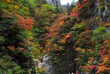 Korea - National Park