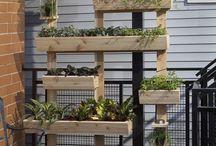 Vertical Pallet herb garden