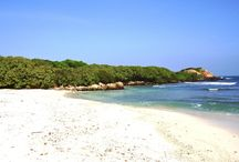 Sri Lanka : la côte de plage en plage / Découvrez toute la côte du Sri Lanka, de Trincomalee à Batticaloa en passant par Galle ou Mirissa !