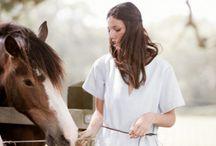 Horses / by Elizabeth Arms