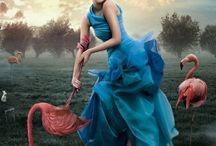 Alice in wonder island
