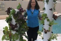 The Future of Gardening: Aeroponics! / New to the market: Tower Garden--I am so excited about it, I signed up to be a distributor!  Let me know if you'd like to offer it to your friends too!  https://janetcook.towergarden.com