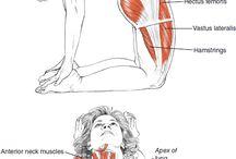 Διατάσεις σώματος yoga