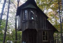 Wood House in Forest