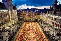 Travel Abroad: Belgium / by Lauren Murray