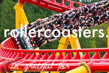 Rollarcoasters Rock / by Chuck Beldotti
