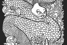 Рептилия. Змея.