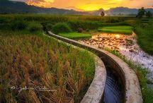 #Visit Indonesia #Wonderful Indonesia