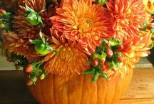 Fall Fun / by Patricia Ashcraft
