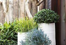 Simple Outdoor furniture