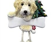 Labradoodle / Labradoodle pictures and gift ideas.