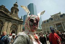 Conejos Zombiewalk