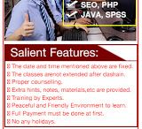 Professional IT courses - php seo java wordpress spss website design