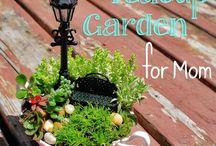 Teacup gardens / Teeny Tiny Fairy gardens ~ Examples & How-tos
