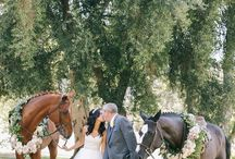 Equestrian Weddings