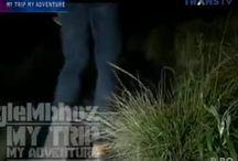 Video Bromo