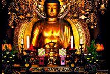 Buddha / by Tosha Silver