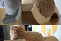 cat furniture & toys