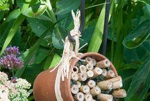Native Bee 'Hotels' for Pollinators