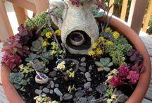 Gardens / by Sarah Lynn