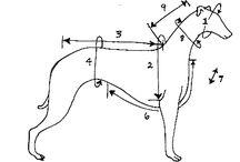Koirien käsityöt