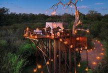 Sleep Under the Stars at South African Resort / The Lion Sands Game Reserve, located at the Sabie Sand Reserve in South Africa, is a hotel which offers nights near the wild life, animals and stars. It gives you the opportunity to admire the African landscape from your bedroom or during your dinner.