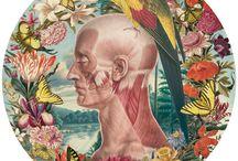 Juan Orestes Gatti / Juan Orestes Gatti illustrations
