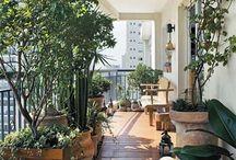 Zahrada, terasa, kvety