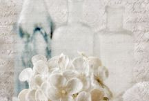 Still Life Photography and Textured Images