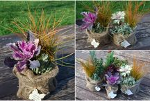 Aranjamente plante ghivece#plant arrangements#spring bulbs#flowers#pot# / wedding floral arrangements, plants in pots, wedding plants, beautiful flower in pot, wedding pots #plante in ghiveci, arnajamente florale nunta, aranjamente cu plante nunta, plante decorative in ghivece, aranjamente mese plante# http://www.dreamgardens.ro/plante-marturii/